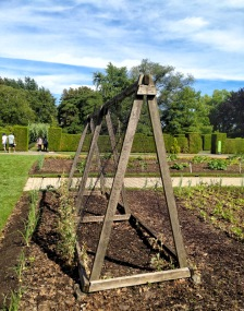 IMG_6302-Botanical-Garden-Niagara